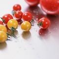 カンジタ発症・再発を予防する食生活